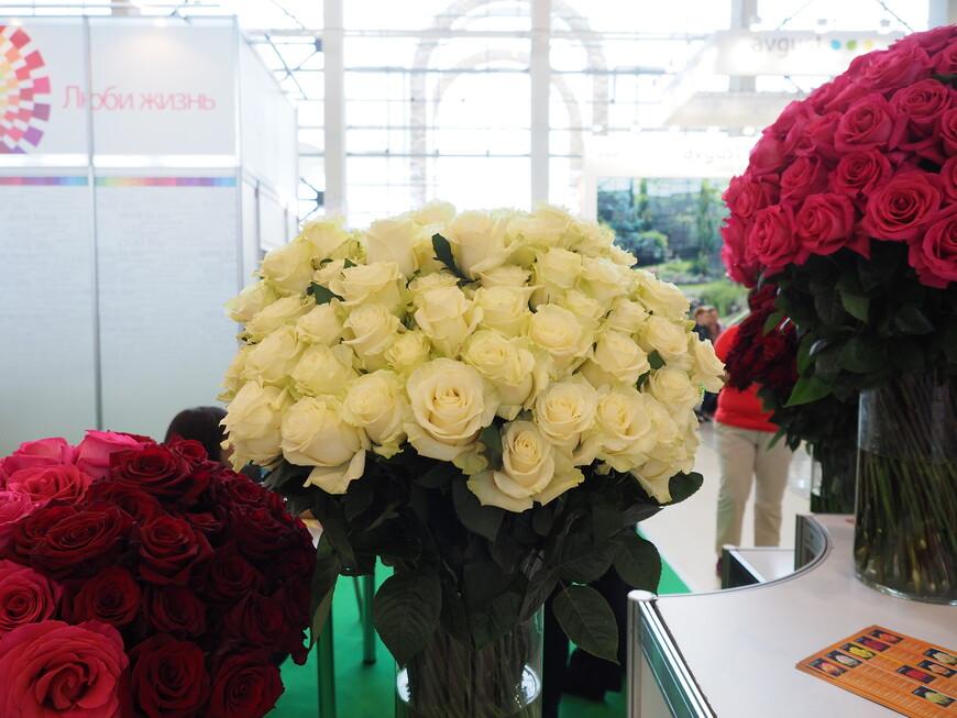 Белые розы из Эквадора