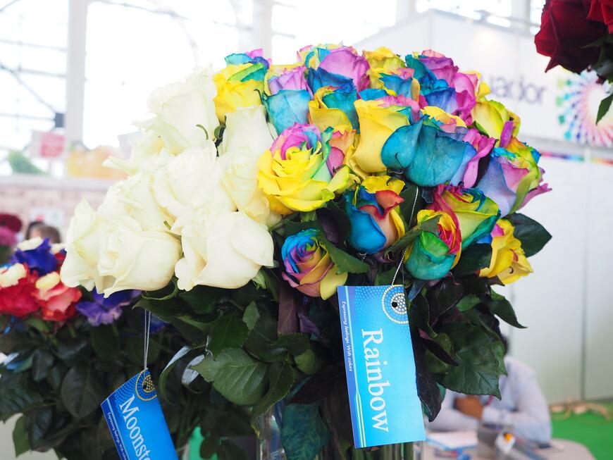 Разноцветные розы имеют название Rainbow - в переводе радуга