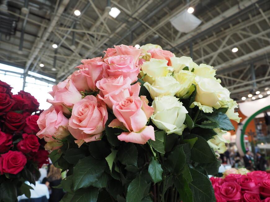 Очень красивые розовые розы