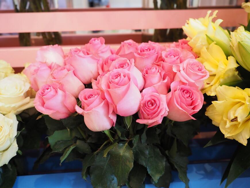 Также выращенные в России розы
