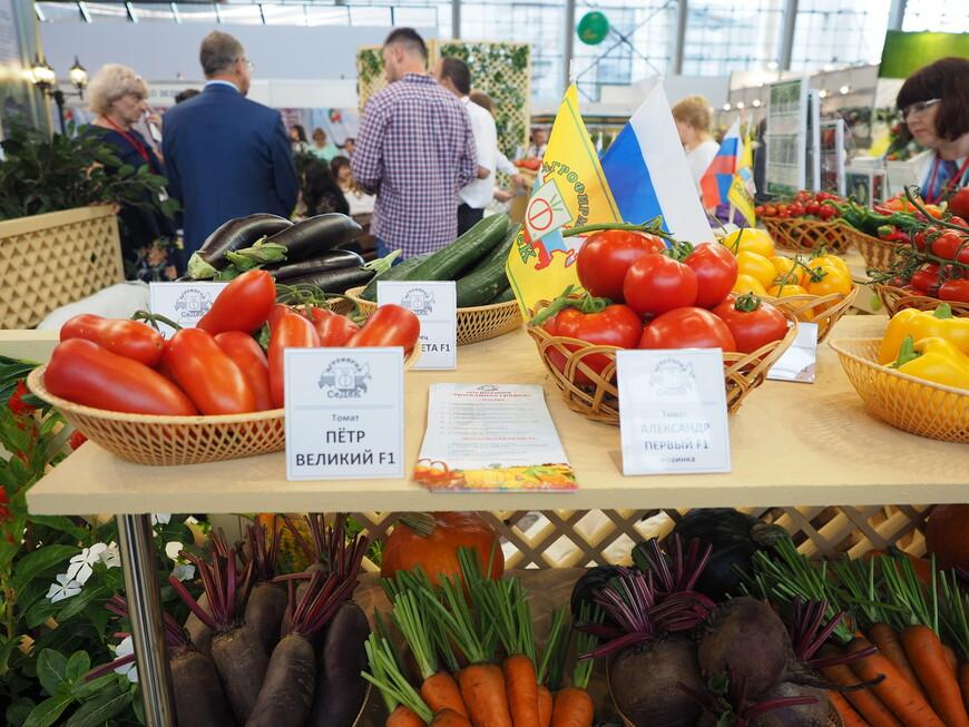 Россиянам предлагается выращивать на даче овощи с именем великих правителей России