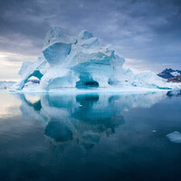 «Белая «Зеленая земля»… ГРЕНЛАНДИЯ… Часть 5. Айсберги и …цветы