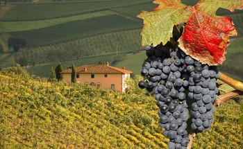 Лучшие фестивали Италии в сентябре
