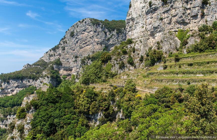 Проложить такие террасы для винограда в горах дело не простое