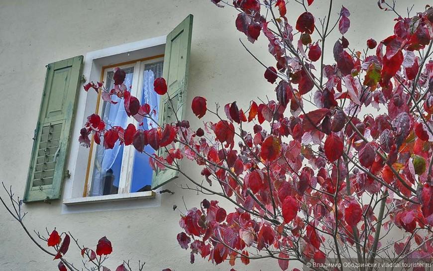 Осень в Ваттаро.