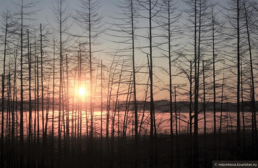 Суровое почти северное лето:-). Но свет сквозь туман рождал надежду на солнечный день.