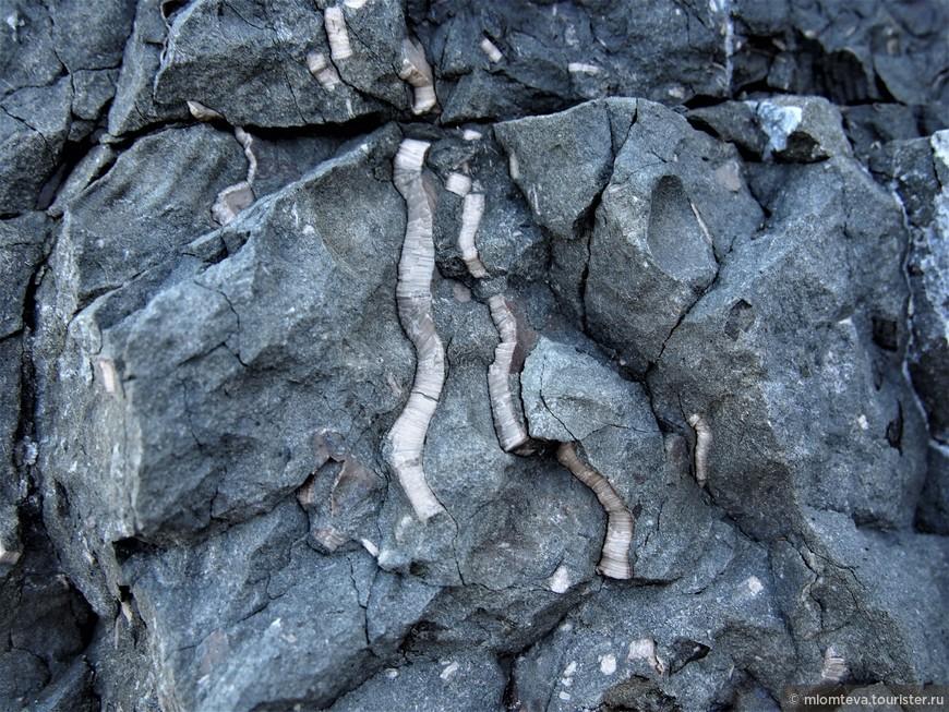 Прожилки чего-то интересного, поперечной структуры, в скале.
