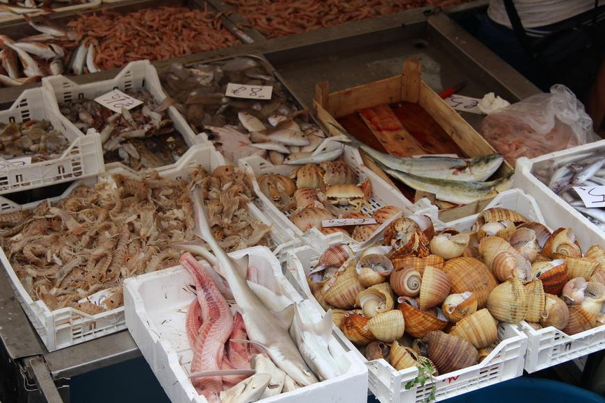 Ну и естественно знаменитый рыбный рынок. Здесь есть практически все: от моллюсков до гигантских рыбин! А продавцы-сицилийцы превращают торговлю в целое представление. Потом мы вынуждены были вернуться в Летоянни. Начался дождь, который не прекращался весь день. Вообще дожди у них летом не так часто бывают. Первые где-то в середине сентября начинаются. Поэтому прогулка получилась у нас не очень долгой, хотя обошли все основные достопримечательности. Хотелось остаться здесь подольше.