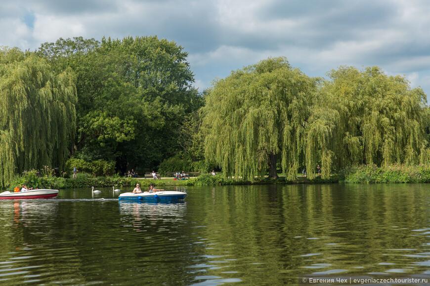 Сегодня площадь озера составляет 184 гектара.
