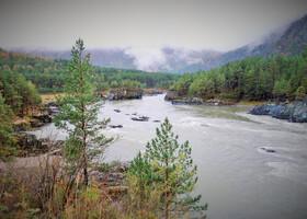 Чемал (Республика Алтай)
