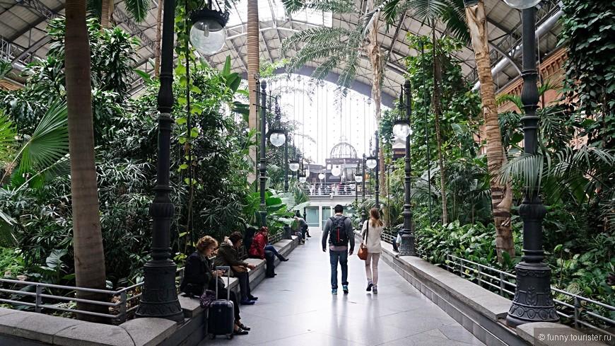 Аточа – это не только железнодорожная станция, но и ботанический сад. И приезжают сюда далеко не только те, кому нужно куда-то отправиться поездом, но и просто полюбоваться прекрасными растениями, посидеть в кафе практически рядом с тропическим садом, посмотреть оригинальные скульптуры, украшающие вокзал.