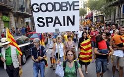 В Каталонии в день проведения референдума пострадали более 800 человек