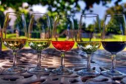 Лучшие осенние винные фестивали России