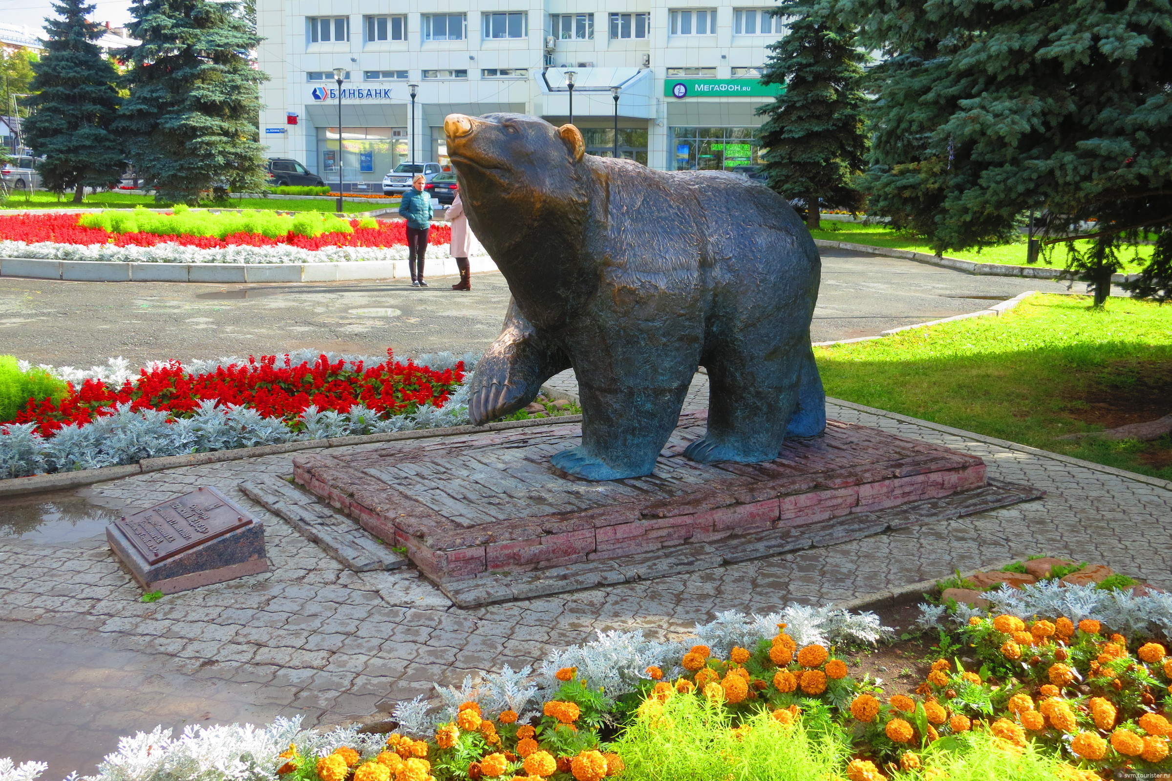 какой-то момент фото пермского медведя прикольная котоматрица для