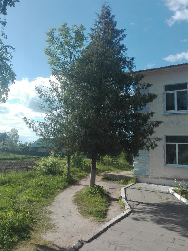 Холопеничи - контора (здание справа)