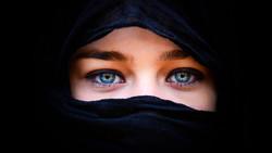 В Австрии запретили закрывать лицо в общественных местах