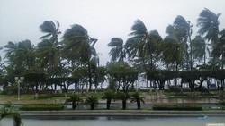 Жертвами тайфуна «Дамри» во Вьетнаме стали более 60 человек