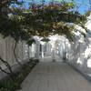 Виноградный дворик караимских кенас