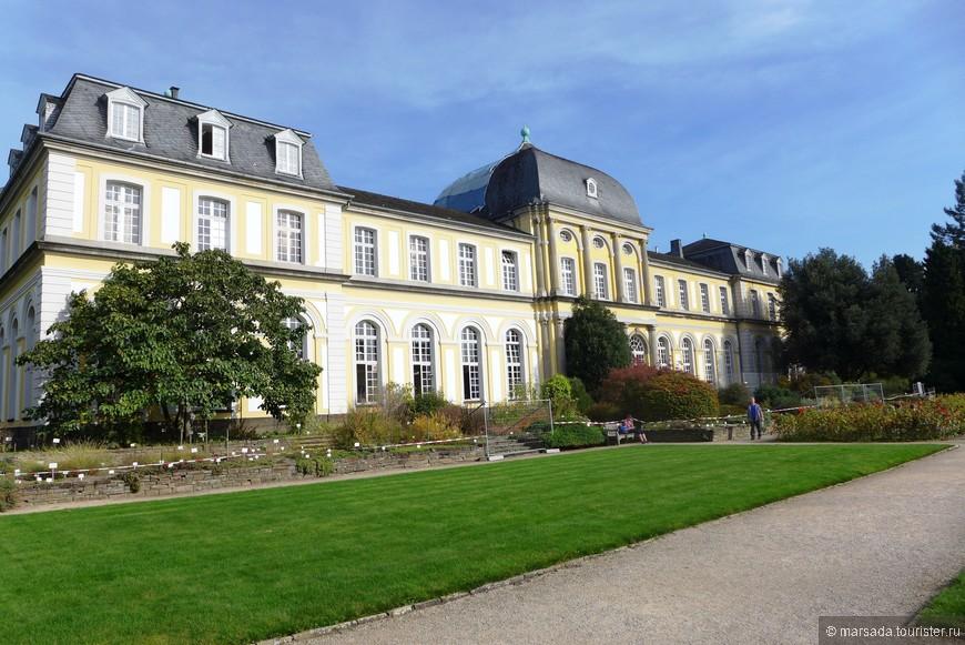Ботанический сад Рейнского университета имени Фридриха Вильгельма является одним из старейших в Европе и сформировался он на основе парка, некогда окружавшего замок Поппельсдорф.