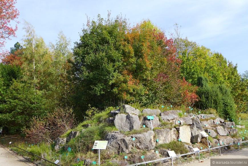 Как же удалось университету в кратчайшие сроки сделать из парка столь великолепный и богатый растениями сад? Дело в том, что к его облагораживанию были привлечены ведущие ботаники и ландшафтные дизайнеры, и некоторые дорожки теперь даже названы в честь них.