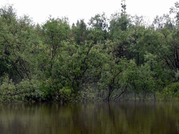 Экстремальная, мокрая, холодная и безрезультативная рыбалка на Северном Урале