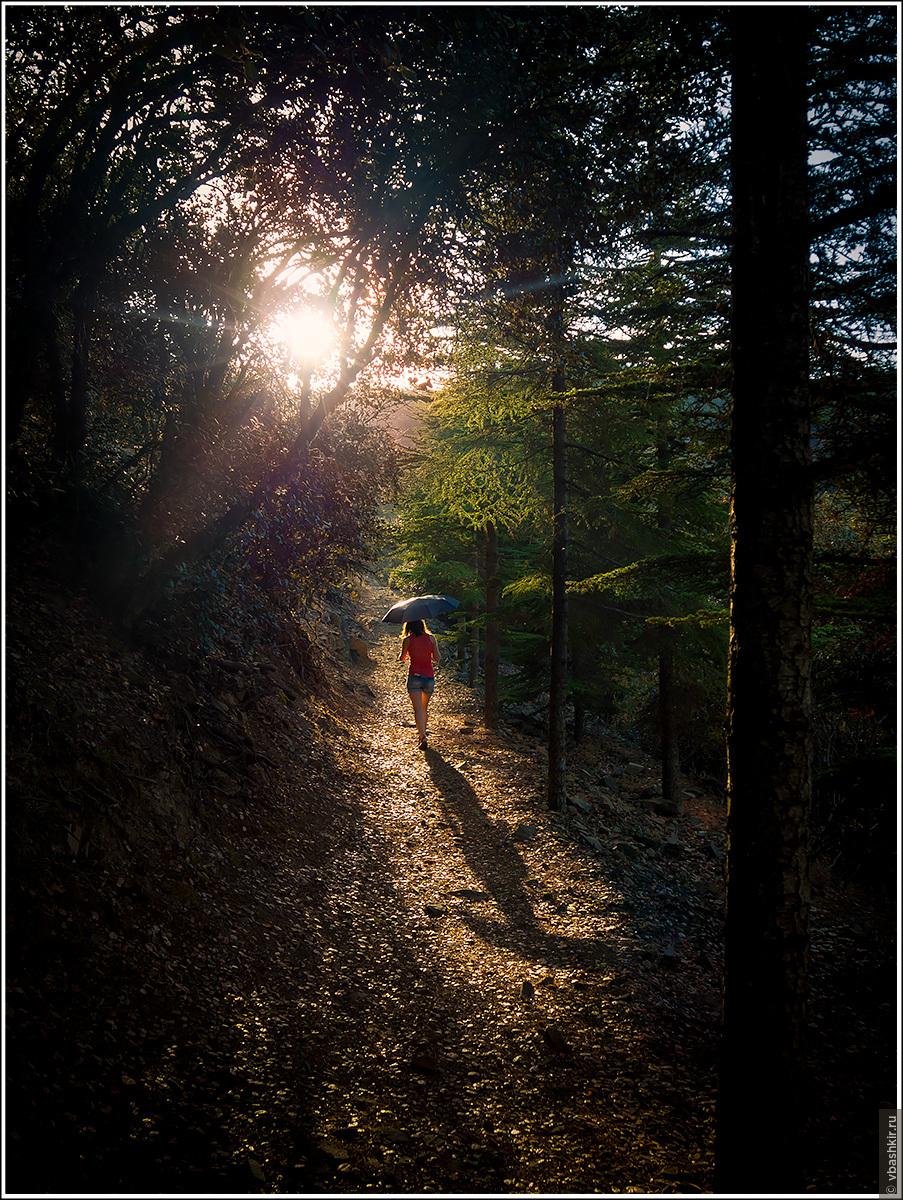 Тропа Мадари. Фото не постановочное. Действительно светило солнце, одновременно шел дождь., Моменты и эпизоды