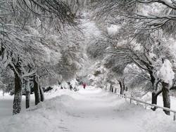 МИД РФ предупреждает туристов о сильных снегопадах в Норвегии и Финляндии