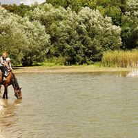 Можно осуществить и конную прогулку. Уровень воды в озере напрямую зависит от количества выпавших в горах осадках и жажды коней.