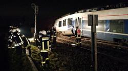 В Германии при столкновении поездов пострадали 50 человек