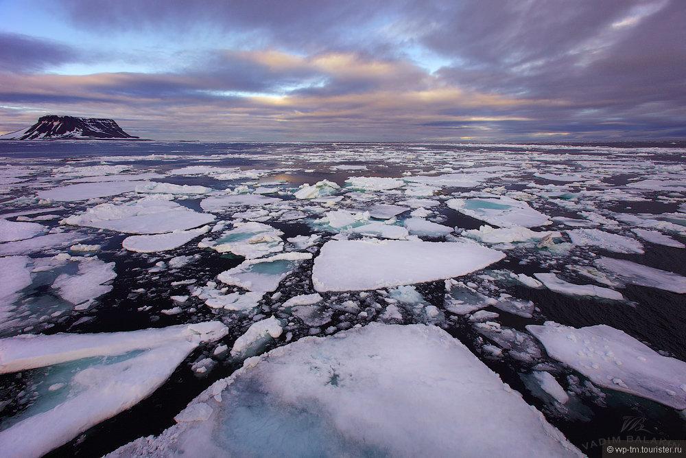 счет острова в северном ледовитом океане фото сих