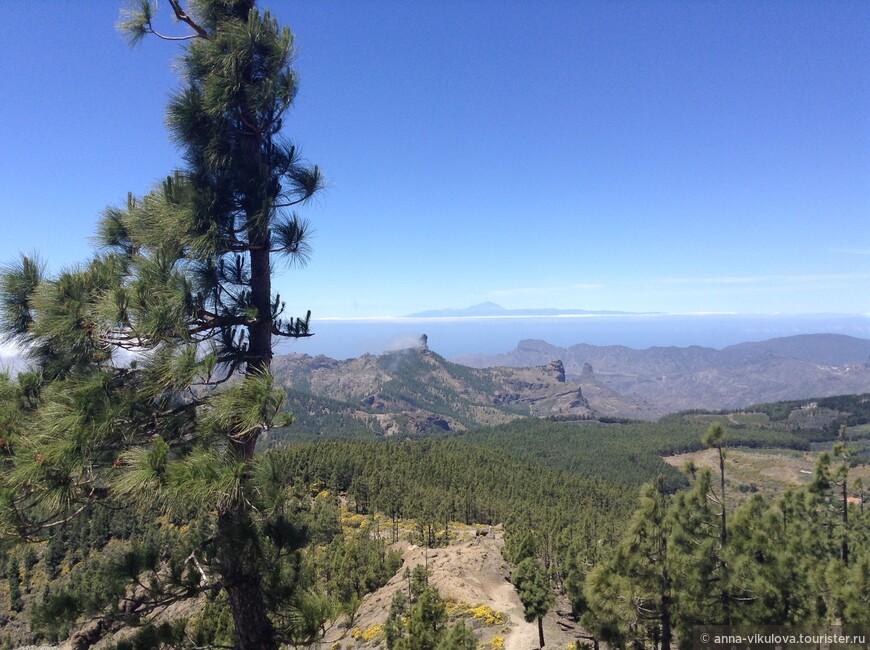 Центральная вершина острова - Техеда. Отсюда открываются головокружительные виды на весь остров, на основные его пики и даже красавец Тейде с Тенерифе украшает собой пейзаж...