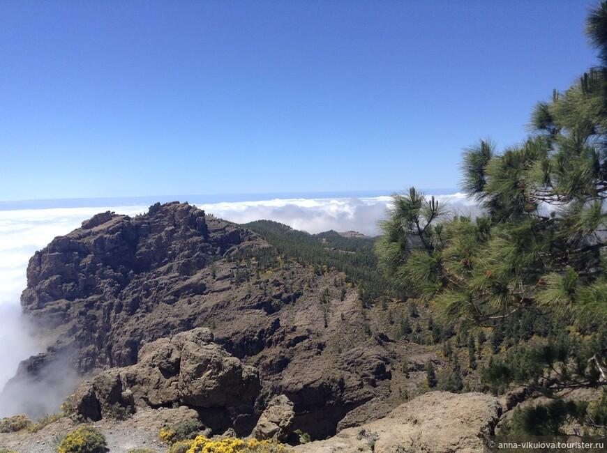 Часть острова закрыта толстым пуховым одеялом облаков, кажется, радивая хозяйка долго его взбивала...