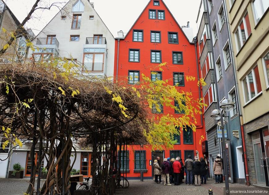 Интерес вызвала не группа туристов, а золотые листья в разгар зимы.