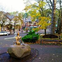Начнем прогулку с улицы Ленина. Царевна-лягушка,(автор Олег Мелихов) скульптура которой расположена, совсем рядом с автобусной остановкой, встречает всех гостей.