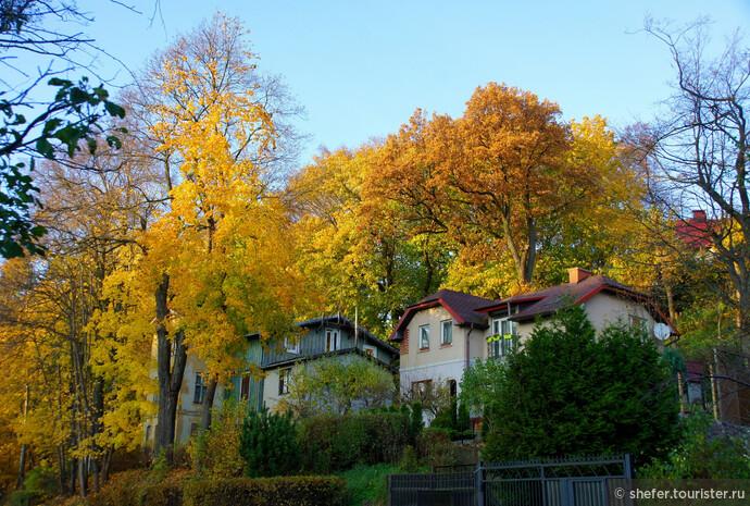 В этой фотографии весь Светлогорск. Город пропитанный солнцем и морским воздухом. Город, стоящий в лесу. Город, дарящий с первых шагов прекрасное настроение.