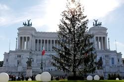Скандальная новогодняя ёлка Рима оказалась «мёртвой»