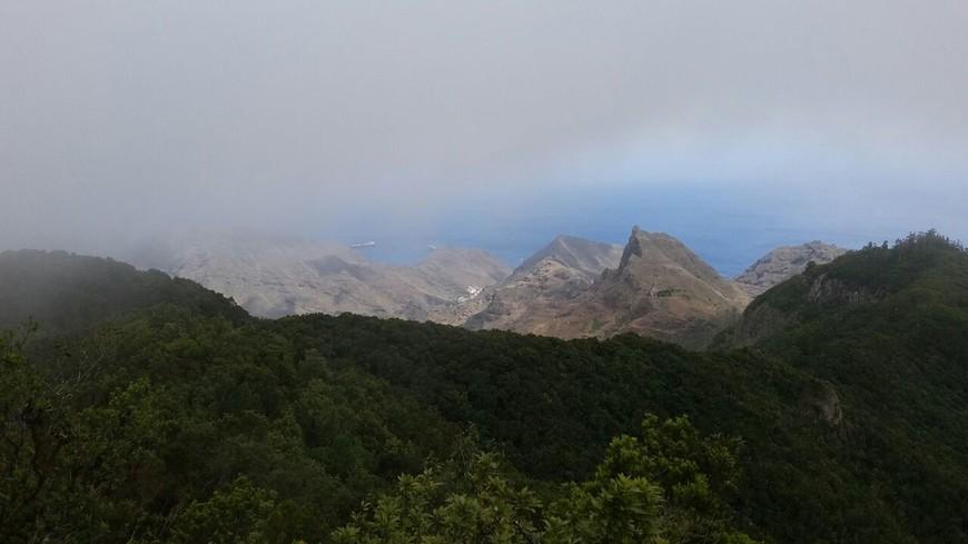 А вы знаете, что дождь на Тенерифе идет горизонтально? Горизонтальные дожди – это процесс конденсации влаги из облаков, которые принесены пассатами. Эту влагу на холмах впитывают деревья и другие растения, а затем «передают» ее в подземные источники.