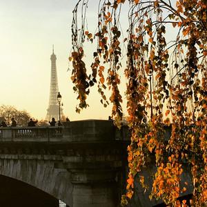 Туда, где оставила свое сердце. Париж