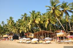 В штате Гоа действуют отдельные правила для прибывающих чартерными рейсами