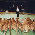 Омский цирк