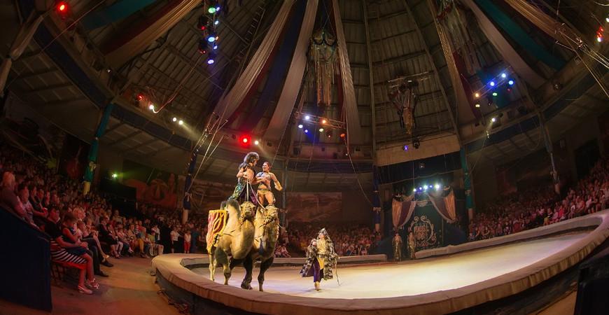 Цирк ижевск купить билеты цена официальный сайт детские спектакли афиша тюз