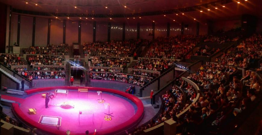 Цирк в Новосибирске