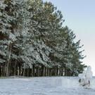 Гора Баран / ТК «Сосновый рай»