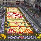 Фестиваль «Ковер из цветов»