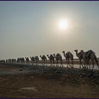 Самое жаркое место на Земле. Солончаки Эфиопии и эфиопский Уюни