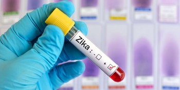 Роспотребнадзор предупреждает о вирусе Зика в Турции