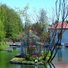 Дендрологический парк «Южные культуры»