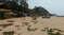 Пляж Патнем