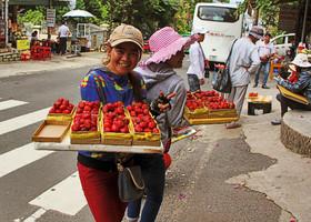 Свободная Страна Вьетнам!
