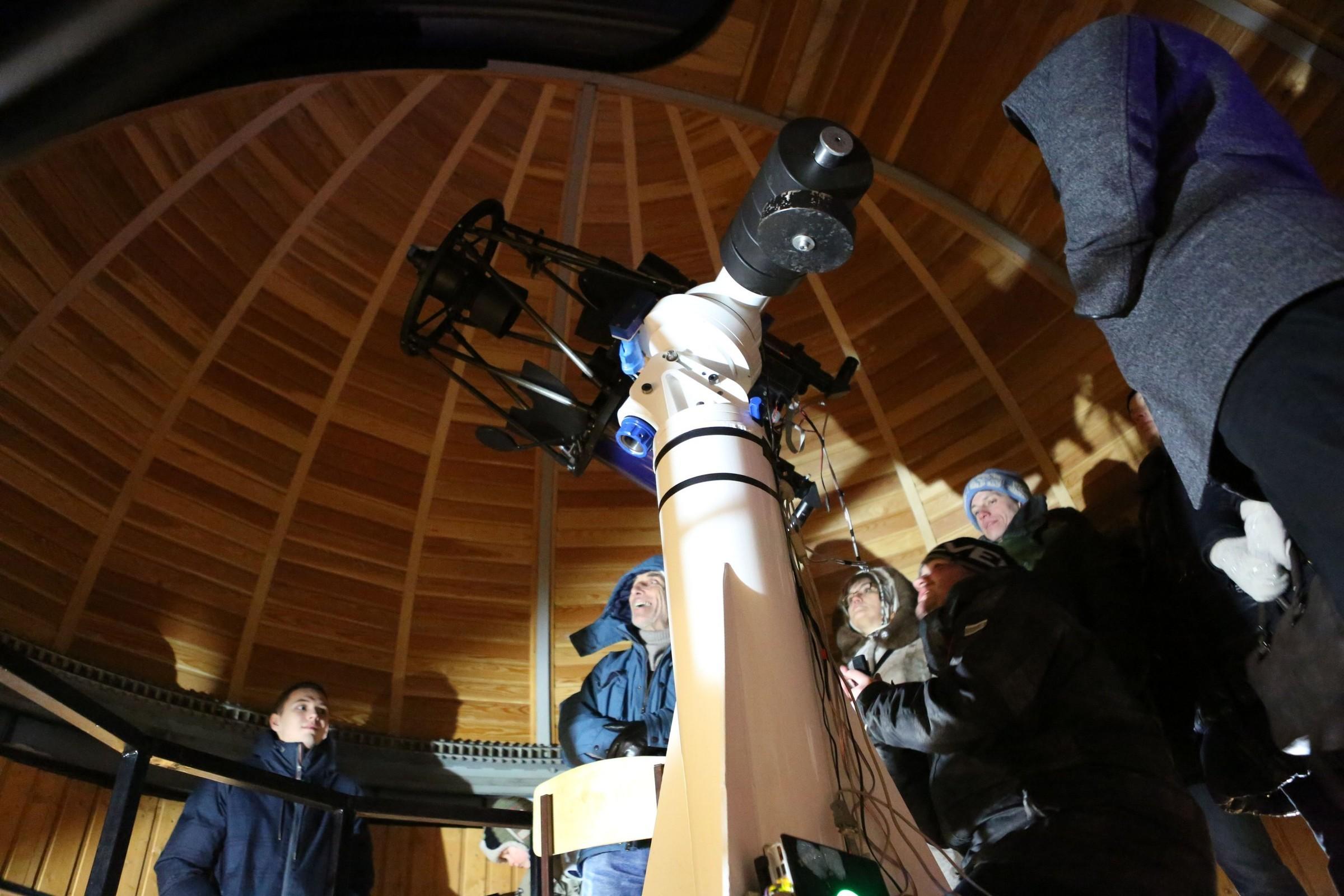 живучки картинки планетарий в новосибирске ваши дети
